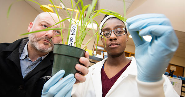 A student and mentor doing plant research